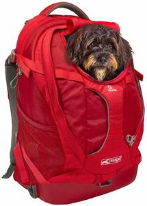#10 Kurgo Dog Carrier Backpack
