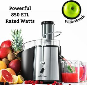 Top 10 Best Juice Extractors in 2020 Reviews