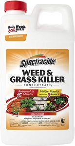4. Spectracide Weed & Grass Killer Concentrate, 64 fl oz