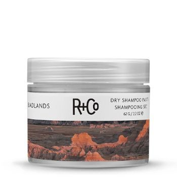9. R+Co Badlands Dry Shampoo Paste