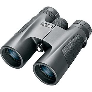 5. Bushnell 10 x 42 Powerview Roof Prism Binocular